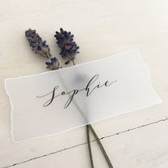 Torn edge place cards Vellum Place Names Vellum Name Cards