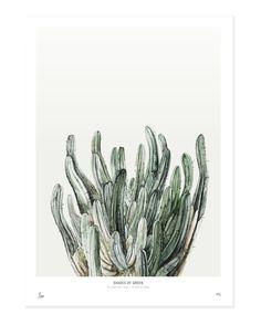 My Deer Art Botanic Print - Shades of Green, Medium - Trouva