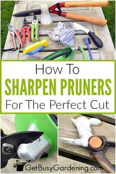 Removing Rust, How To Remove Rust, Pruning Tools, Pruning Shears, Garden Tool Storage, Garden Tools, Garden Ideas, Gardening For Beginners, Gardening Tips