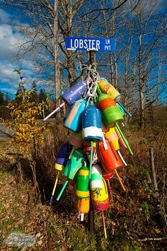 bar harbor Acadia National Park, National Parks, Ogunquit Maine, Bar Harbor Maine, Lobster Trap, Maine New England, Nautical Signs, Fisherman's Wharf, Mount Desert Island