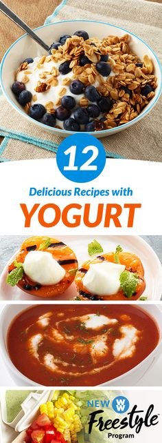 12 Delicious Yogurt Recipes | Yogurt isn't just for breakfast! Check out a dozen ways to use 0 SmartPoint Greek yogurt in your cooking.