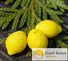 ✔ What's Hot Today: Opaque Yellow Lemon Beads Czech Glass Lemon Beads Glass Fruit Beads Lemon Glass Beads Czech Lemon Beads Czech Glass Beads 14mm x 10mm 4pc https://czechbeadsexclusive.com/product/opaque-yellow-lemon-beads-czech-glass-lemon-beads-glass-fruit-beads-lemon-glass-beads-czech-lemon-beads-czech-glass-beads-14mm-x-10mm-4pc/?utm_source=PN&utm_medium=czechbeads&utm_campaign=SNAP #CzechBeadsExclusive #czechbeads #glassbeads #bead #beaded #beading #beadedjewelry #han