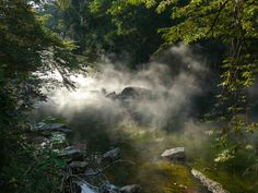 Boiling river Santuario Huistin