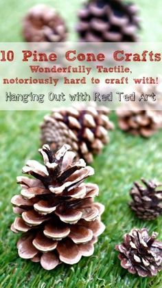 Pine Cone Craft Ideas - nature crafting at it's best. Pine cones are wonderfully tactile and great to craft with, but at the same AWKWARD to craft with.. here are some lovely ideas for you...
