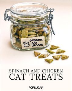 Homemade Organic Spinach and Chicken Cat Treats just because my cats are my children! :)