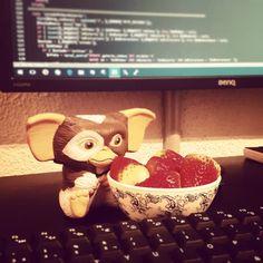 Cuidado con mi compañero de trabajo// watch out for my co-worker #desarrolloWeb#css#html#webdev#appdesing#programando#diseñoWeb#php#javascript#html5#css3 #gizmo #fresas #benq #FelizSabado #happysaturdays #programmer