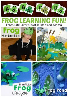 Preschool Frog Themed Learning and Alphabet Activities + Free Printables, too! at B-Inspired Mama Frog Activities, Kids Learning Activities, Alphabet Activities, Kindergarten Activities, Fun Learning, Preschool Ideas, Teaching Ideas, Pond Animals, Frog Theme