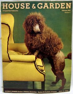 Vintage 1937 House & Garden, Poodle on cover