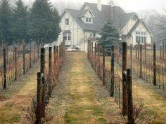 Marterella Winery - Warrenton, Virginia