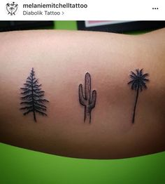 Teeny tiny pine tree, cactus and palm tree tattoo