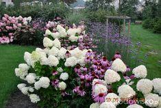 Small Gardens, Outdoor Gardens, Hydrangea Garden, Hydrangeas, Side Garden, Backyard Creations, Front Yard Landscaping, Dream Garden, Garden Planning
