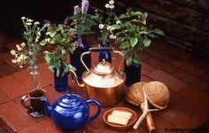 Fresh herbs make the best tea: chamomile, anise hyssop, cinnamon basil, and mint.