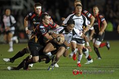 On Rugby Pro12: Newport Dragons - Zebre, foto di Sebastiano Pessina » On Rugby
