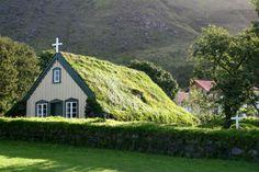 Techos verdes, o cómo ahorrar con jardines en la azotea;