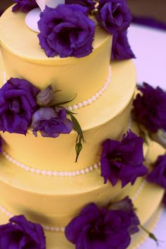1000 Images About Purple Yellow On Pinterest Yellow