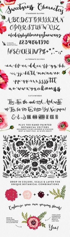 Sweetgrass Typeface & Floral Vectors by Callie Hegstrom on @creativemarket