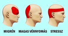 Shiatsu Massage – A Worldwide Popular Acupressure Treatment - Acupuncture Hut Migraine Pain, Migraine Relief, Fitness Workouts, Getting Rid Of Migraines, How To Relieve Headaches, Gewichtsverlust Motivation, Tension Headache, Severe Headache, Headache Remedies