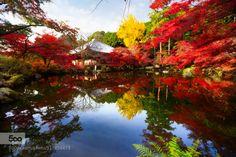 Autumn park by pat138241  zen ancient architecture art asia asian autumn beautiful beauty buddha buddhism buddhist building ch
