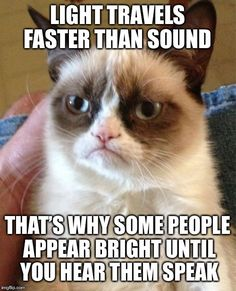 Grumpy Cat | LIGHT TRAVELS FASTER THAN SOUND THAT'S WHY SOME PEOPLE APPEAR BRIGHT UNTIL YOU HEAR THEM SPEAK | image tagged in memes,grumpy cat | made w/ Imgflip meme maker