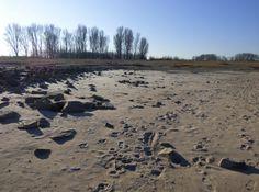Rheinstrand bei Worringen, Foto: S. Hopp