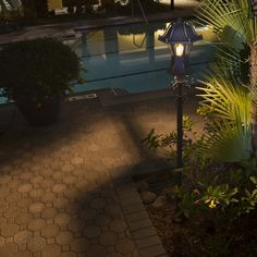 Pretty outdoor lighting Ideas For Your Garden or Your Porch, 3592891113 Outside Lighting Ideas, Outdoor Lighting, Pathway Lighting, Outdoor Landscaping, Front Yard Landscaping, Landscaping Jobs, Sidewalk Lighting, Trees For Front Yard