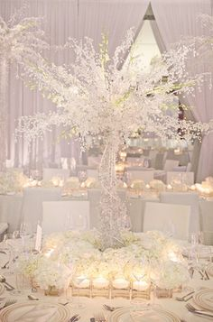 The White wedding is pretty stunning