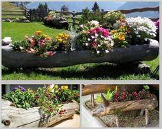 garden-log-planter-1.jpg (600×481)
