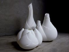 Botanical Ceramics by Jo Meesters