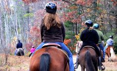 Groupon - One- or Two-Hour Trail Ride on Horseback for One or Two at Cornerstone Ranch (Up to 54% Off). Groupon deal price: $25.00