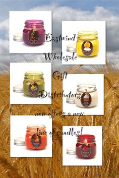 We now offer a new line of amazingly scented mason jar candles by Orchard Village!   Our scents include:  ~Plum Berry   ~Lemon Sugar   ~Fig & Pear   ~Vanilla Cupcake  ~Tangerine Mango  ~Macintosh Apple   Once the candle is used up, remove the label and the mason jar can be used to store a variety of other items in your home.