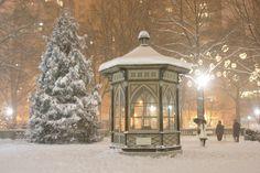 Snowy day in Rittenhouse Square, Philadelphia, Pa