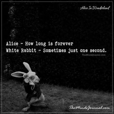 As Lost As Alice.. As Mad as the Hatter.the best of Alice in Wonderland quotes (my way). i Love these Quotes you would love them too.