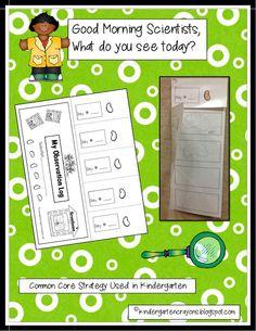 Kindergarten Crayons: Are You Full of Bean In Kindergarten? Grab this freebie!