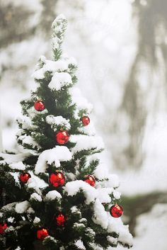 Christmas tree decorated with red baubles and covered with fresh snow
