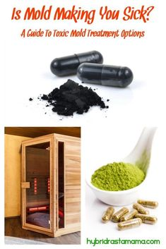 How To Detox Your Body From Mold (What I Did) Is mold making you sick? A guide to toxic mold treatme House Cleaning Tips, Spring Cleaning, Cleaning Hacks, Mold Exposure, Cleaning Painted Walls, Detox Your Body, Body Cleanse, Toilet Cleaning, Fibromyalgia