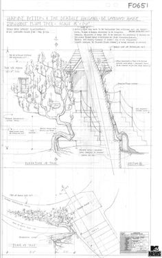 pg.-189-construction-plans-for-the-Lovegood-House-set
