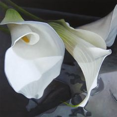 Lilies 8x8, painting by artist M Collier