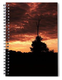 """This x spiral notebook features the artwork """"Natural Lightning Rod"""" by Karen Silvestri on the cover and includes 120 lined pages for your notes and greatest thoughts. Lightning Rod, Notebooks For Sale, Spiral Notebooks, Lined Page, Fine Art America, Notes, Artists, Thoughts, Group"""