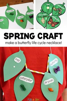 Butterfly Life Cycle Craft Necklace - Fun-A-Day! Butterfly Life Cycle Craft Necklace - Fun-A-Day! A twist on the traditional butterfly lif. Kindergarten Science, Preschool Activities, Science Classroom, Insect Activities, Kindergarten Themes, Life Cycle Craft, Theme Nature, Insect Crafts, Butterfly Life Cycle