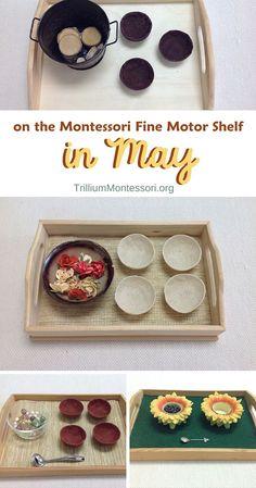 May Fine Motor Shelf