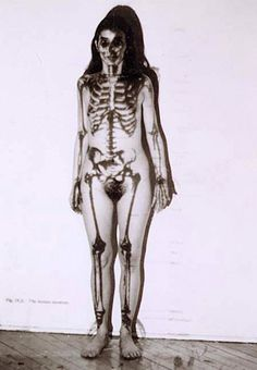 Ana Mendieta: Untitled - 1973