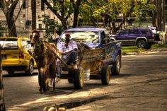 Haulage. Local travelling by horse and cart in Georgetown, Guyana, South America