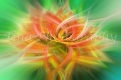 Meditation Flowers Wall Art Sympathy and Visibility  Healing art  This image could make your day. Alternatively it could make an ideal present.  Size: A3 (29,7 x 42 cm / 11,7 x 16,5 inches)  I created these unique and amazing looking images based on my studies on psychology in general, colour therapy, aura soma, Angel therapy, Angel card reading and Reiki. They are photo-based (my own images of course) but strongly worked in Photoshop that they can reach this special and non-replicable l...