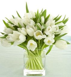 Flower arrangement idea for tulips ... stems positioned diagonally in the vase