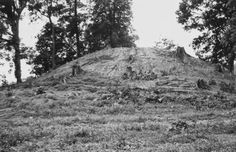 Burial Mound in Kentucky's Land of the Giants Before Being Destroyed by the University of Kentucky