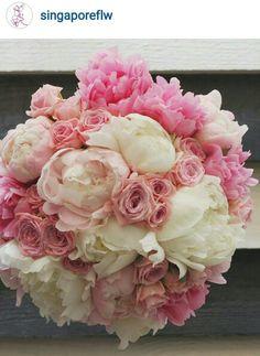 Beautiful pinks, love peonies