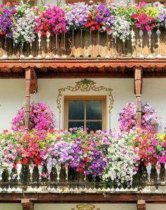 """Résultat de recherche d'images pour """"balcon fleuri de rome"""""""