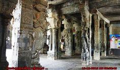 Sculptural+marvel+Pillars+in+Chettikulam+Temple.jpg (1200×710)