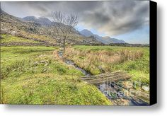 Water Crossing Stretched Canvas Print / Canvas Art By Darren Wilkes