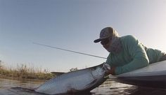 Video: The search for Tarpon on the Fly - Orvis News